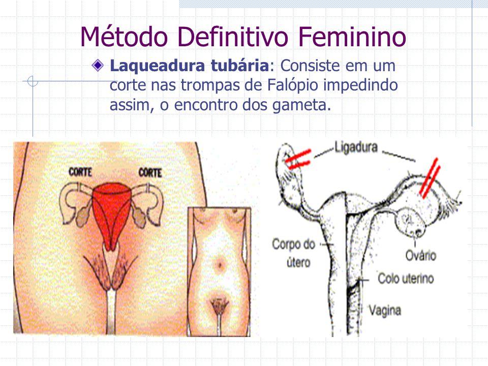 Método Definitivo Feminino