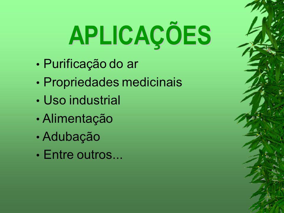 APLICAÇÕES Purificação do ar Propriedades medicinais Uso industrial