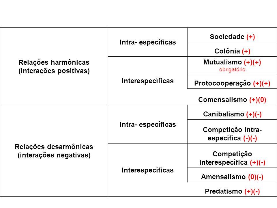 Relações harmônicas (interações positivas) Intra- específicas