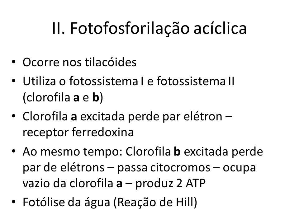 II. Fotofosforilação acíclica