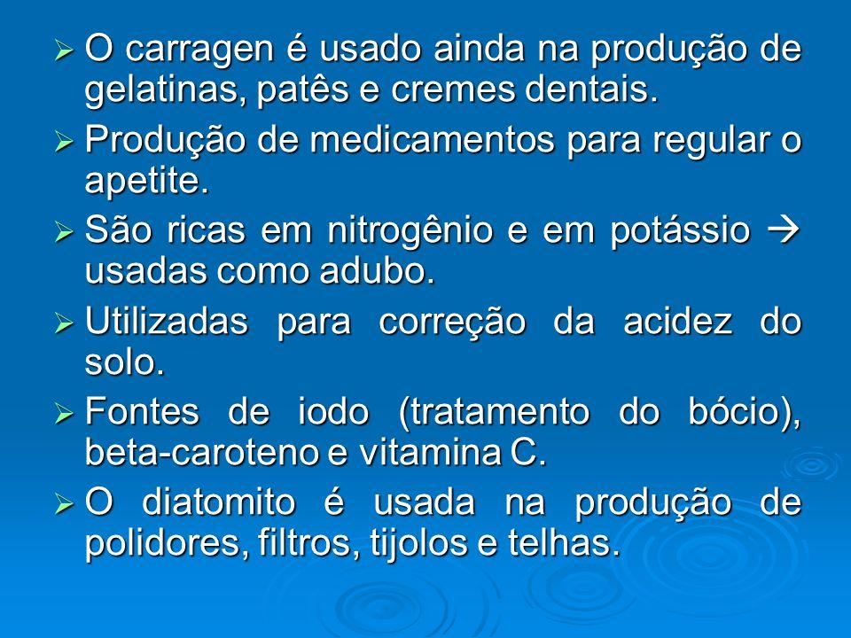 O carragen é usado ainda na produção de gelatinas, patês e cremes dentais.