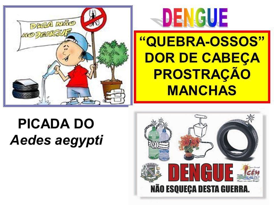 DENGUE QUEBRA-OSSOS DOR DE CABEÇA PROSTRAÇÃO MANCHAS PICADA DO Aedes aegypti