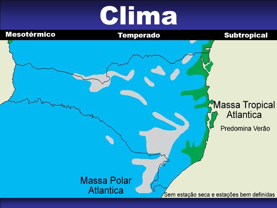 Clima Mesotérmico Temperado Subtropical