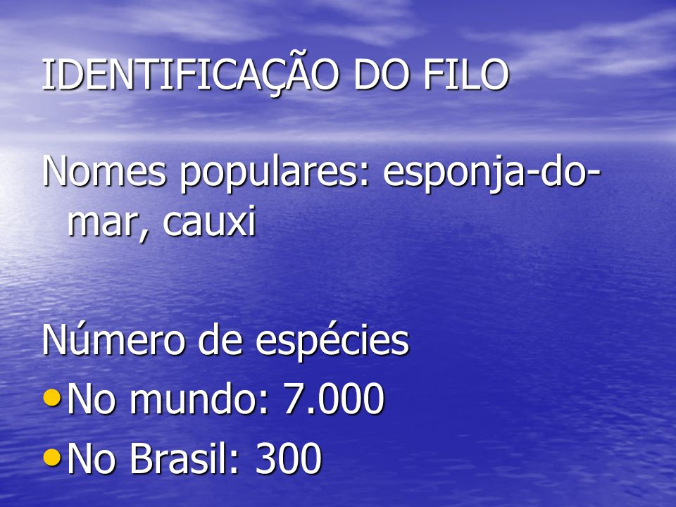 IDENTIFICAÇÃO DO FILO Nomes populares: esponja-do-mar, cauxi. Número de espécies. No mundo: 7.000.