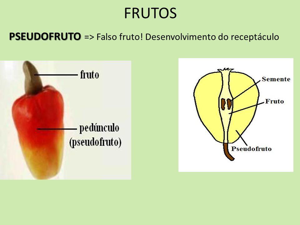 FRUTOS PSEUDOFRUTO => Falso fruto! Desenvolvimento do receptáculo