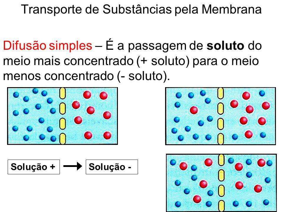 Transporte de Substâncias pela Membrana