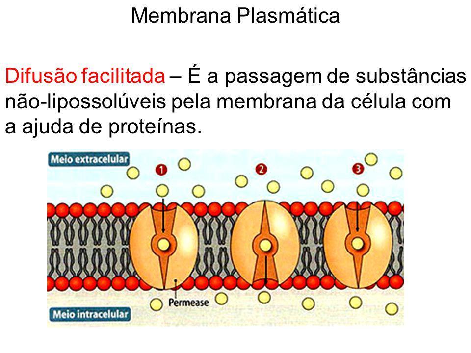 Membrana Plasmática Difusão facilitada – É a passagem de substâncias não-lipossolúveis pela membrana da célula com a ajuda de proteínas.