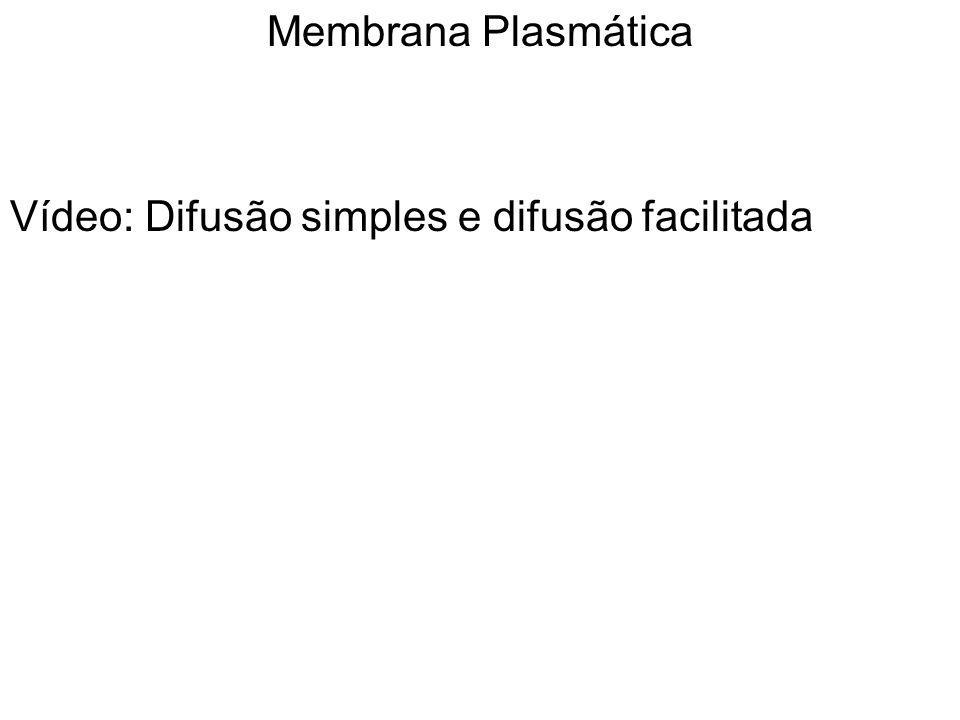 Membrana Plasmática Vídeo: Difusão simples e difusão facilitada