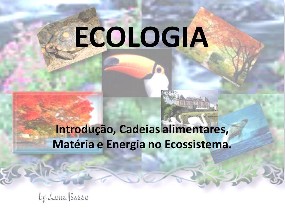 Introdução, Cadeias alimentares, Matéria e Energia no Ecossistema.
