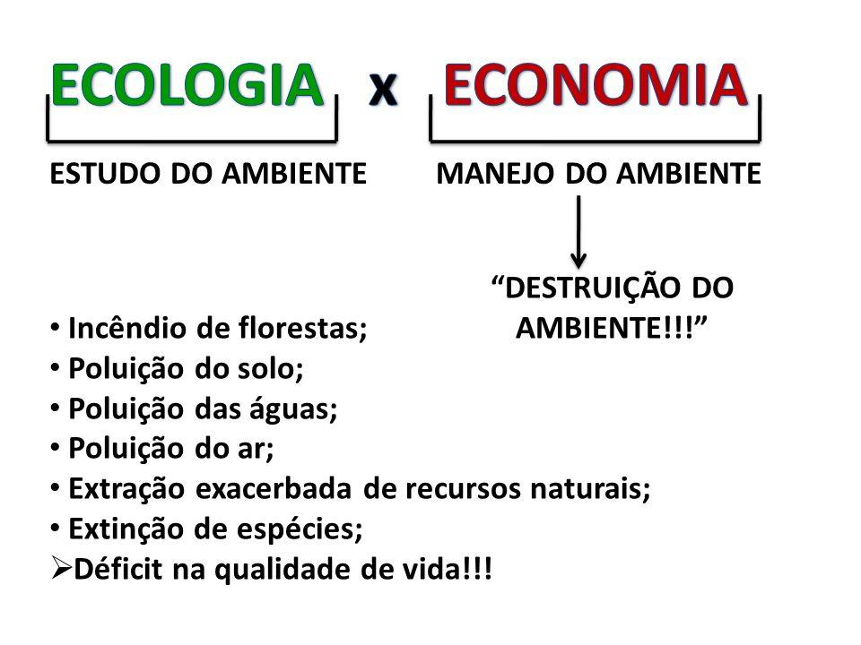 DESTRUIÇÃO DO AMBIENTE!!!