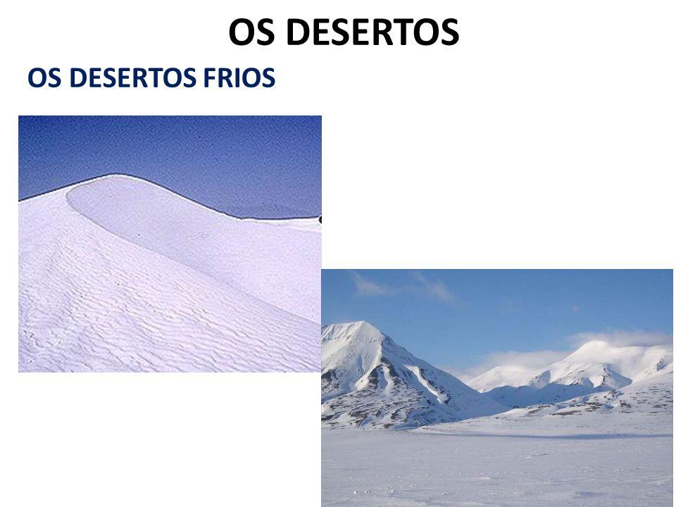 OS DESERTOS OS DESERTOS FRIOS