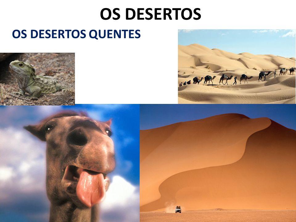 OS DESERTOS OS DESERTOS QUENTES