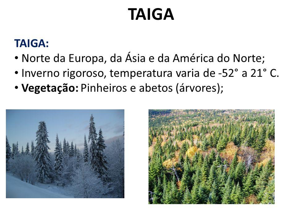 TAIGA TAIGA: Norte da Europa, da Ásia e da América do Norte;