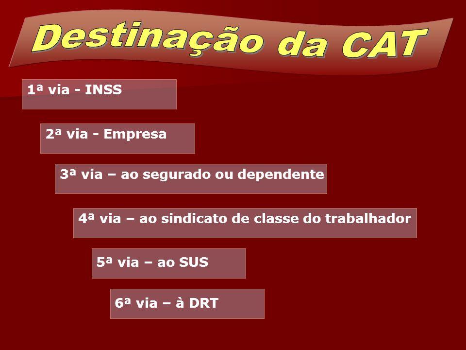 Destinação da CAT ' 1ª via - INSS 2ª via - Empresa