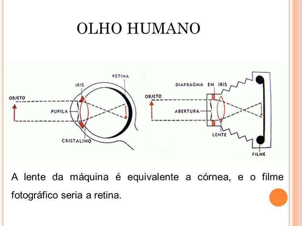 OLHO HUMANO A lente da máquina é equivalente a córnea, e o filme fotográfico seria a retina.