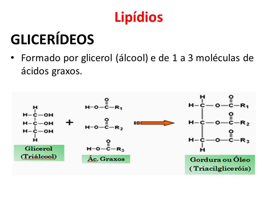 Lipídios GLICERÍDEOS Formado por glicerol (álcool) e de 1 a 3 moléculas de ácidos graxos.