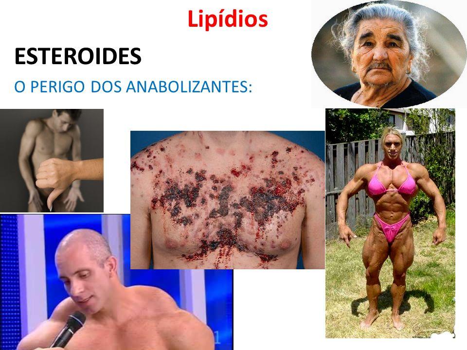 Lipídios ESTEROIDES O PERIGO DOS ANABOLIZANTES: