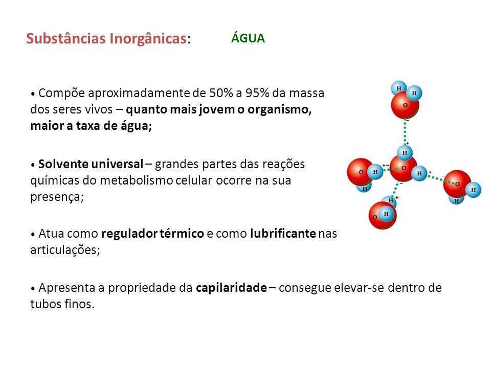 Substâncias Inorgânicas: