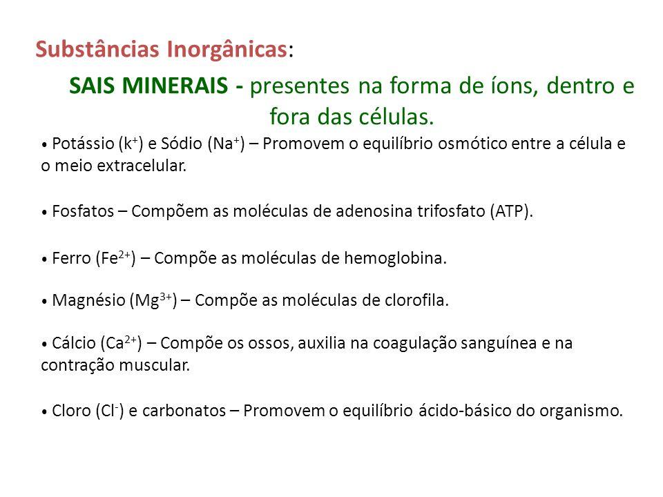 SAIS MINERAIS - presentes na forma de íons, dentro e fora das células.