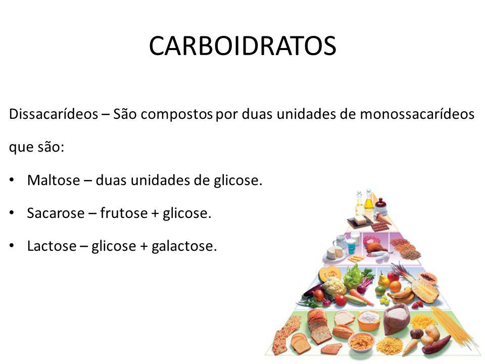 CARBOIDRATOS Dissacarídeos – São compostos por duas unidades de monossacarídeos. que são: Maltose – duas unidades de glicose.