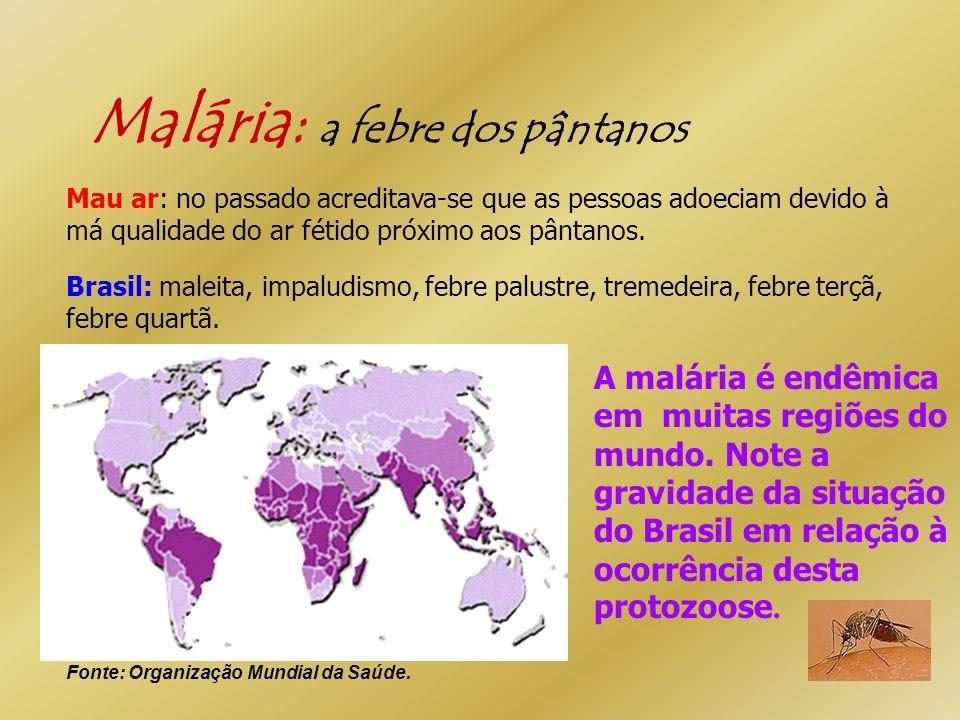 Malária: a febre dos pântanos