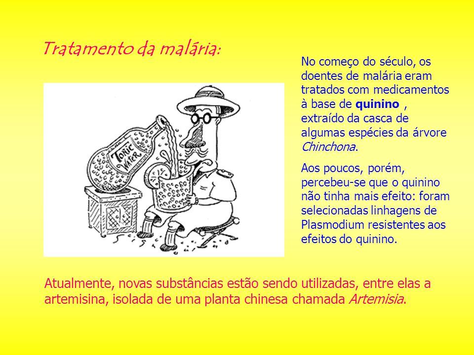 Tratamento da malária: