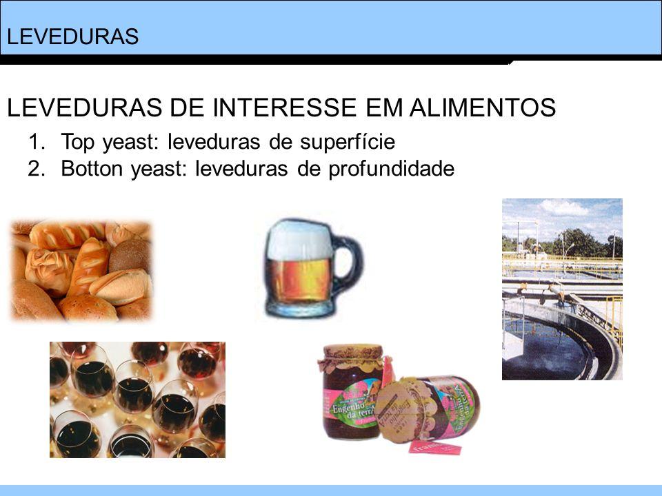 LEVEDURAS DE INTERESSE EM ALIMENTOS