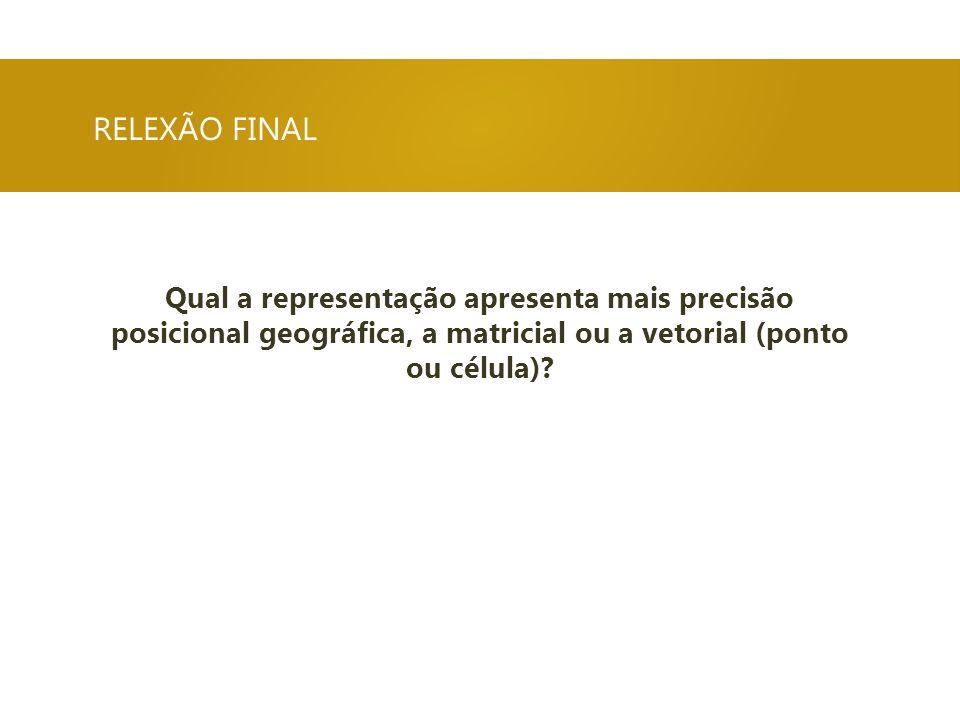 RELEXÃO FINAL Qual a representação apresenta mais precisão posicional geográfica, a matricial ou a vetorial (ponto ou célula)