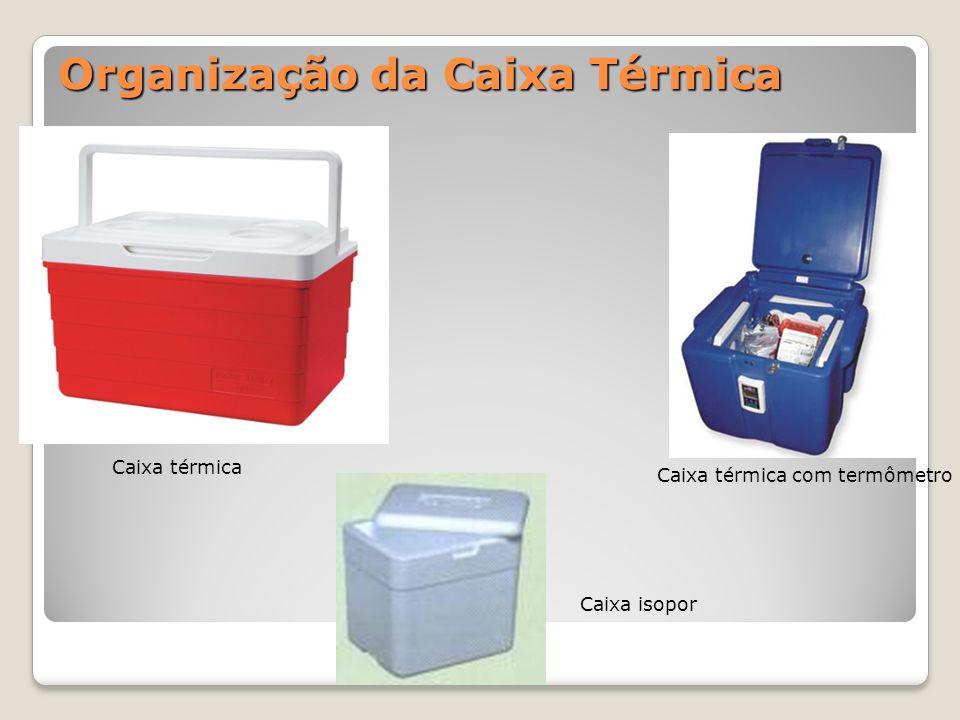 Organização da Caixa Térmica