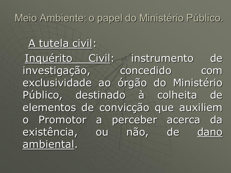 Meio Ambiente: o papel do Ministério Público.