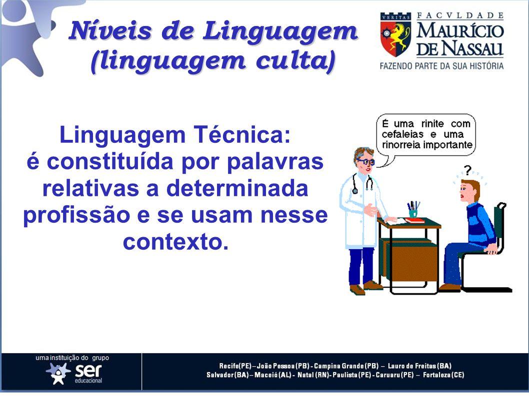 Níveis de Linguagem Níveis de Linguagem (linguagem culta)