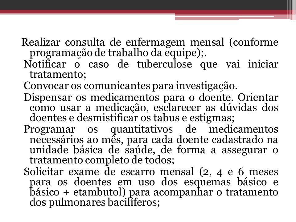 Realizar consulta de enfermagem mensal (conforme programação de trabalho da equipe);.