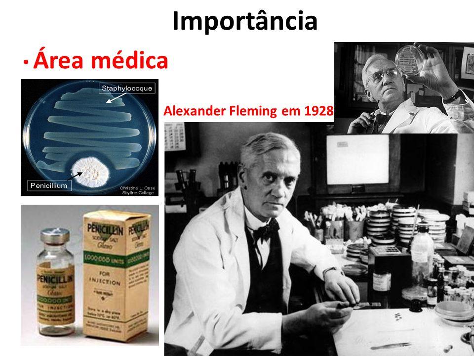 Importância Área médica Alexander Fleming em 1928