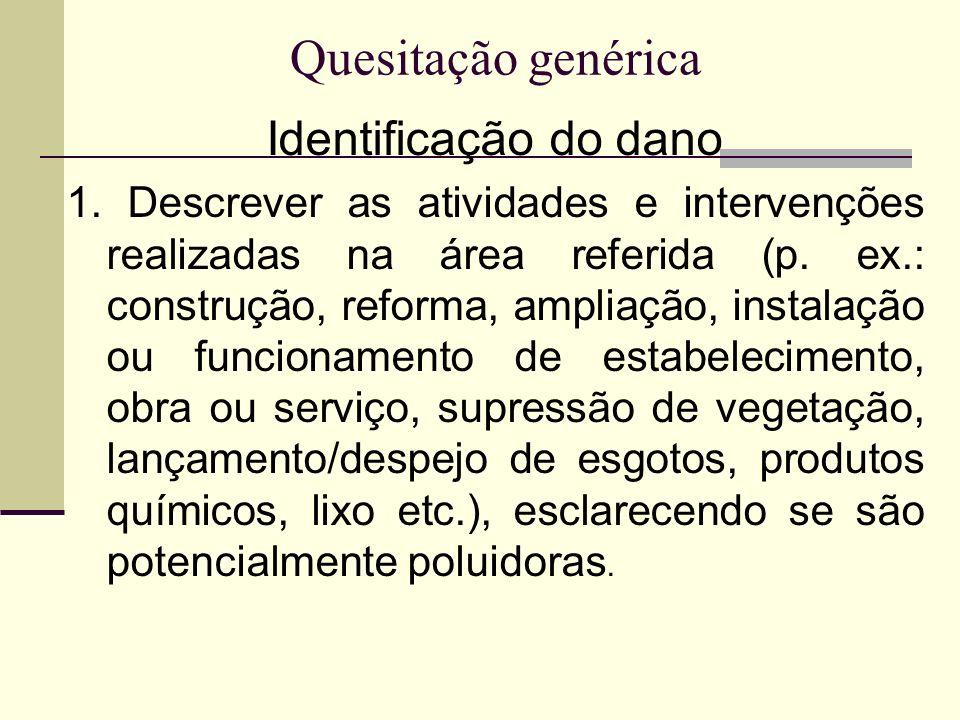 Quesitação genérica Identificação do dano