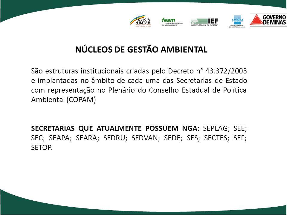 NÚCLEOS DE GESTÃO AMBIENTAL
