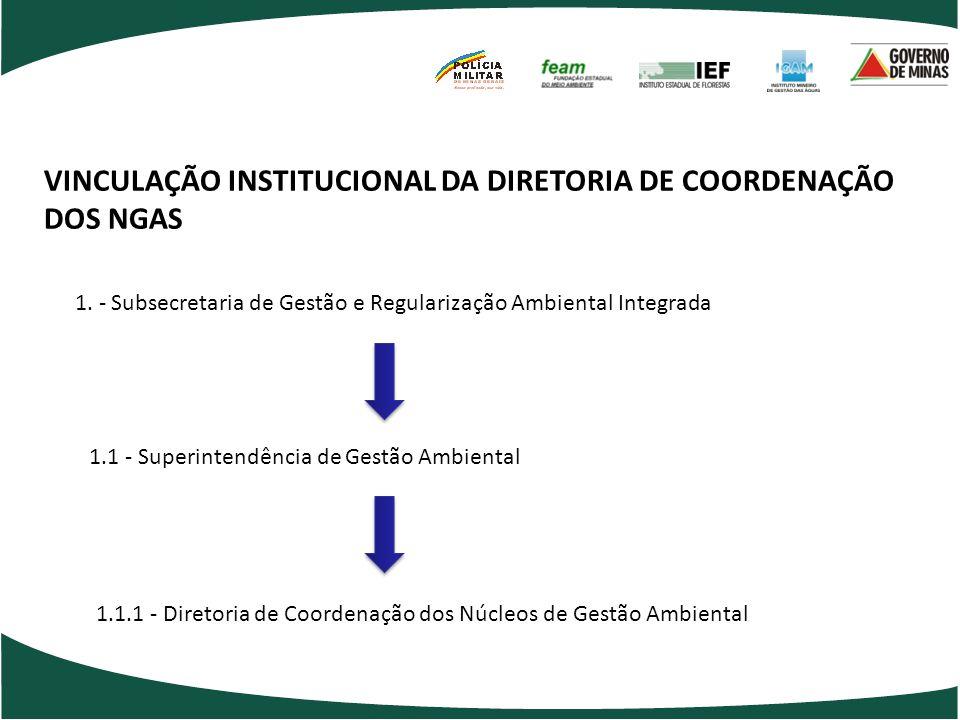 VINCULAÇÃO INSTITUCIONAL DA DIRETORIA DE COORDENAÇÃO DOS NGAS