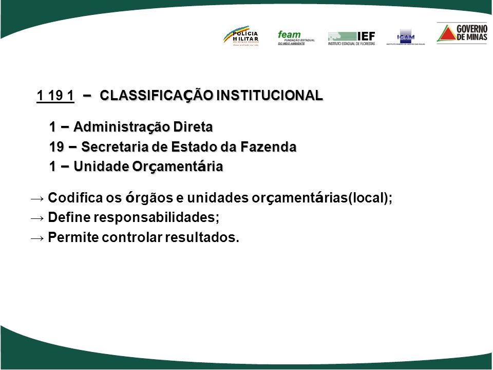 1 19 1 – CLASSIFICAÇÃO INSTITUCIONAL