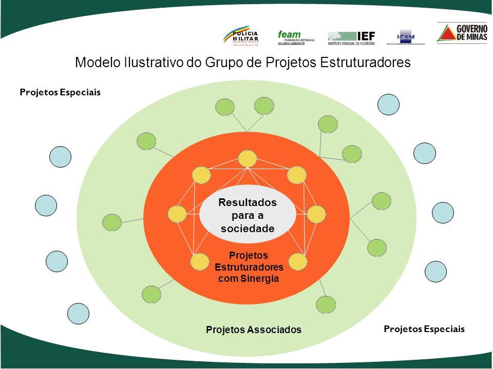 Projetos Estruturadores com Sinergia Resultados para a sociedade