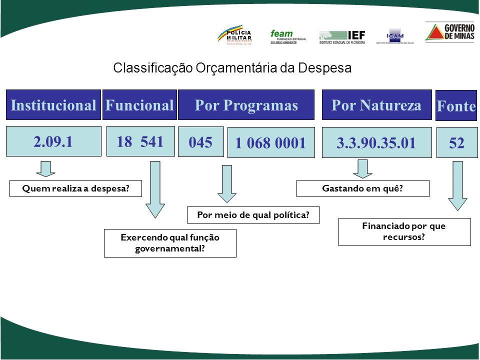 2.09.1 18 541 Institucional Funcional Por Programas 045 1 068 0001