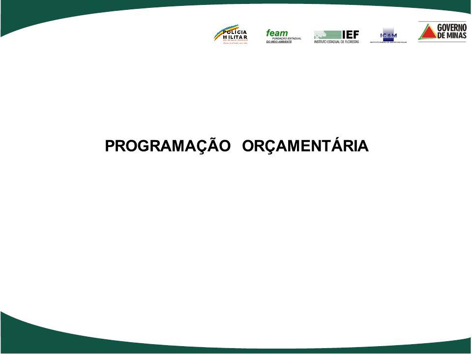 PROGRAMAÇÃO ORÇAMENTÁRIA