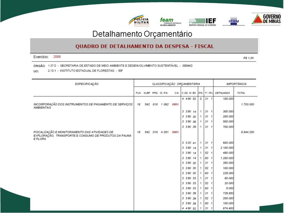 Detalhamento Orçamentário
