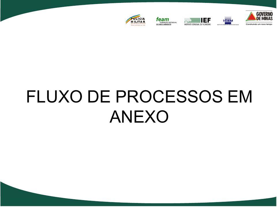 FLUXO DE PROCESSOS EM ANEXO