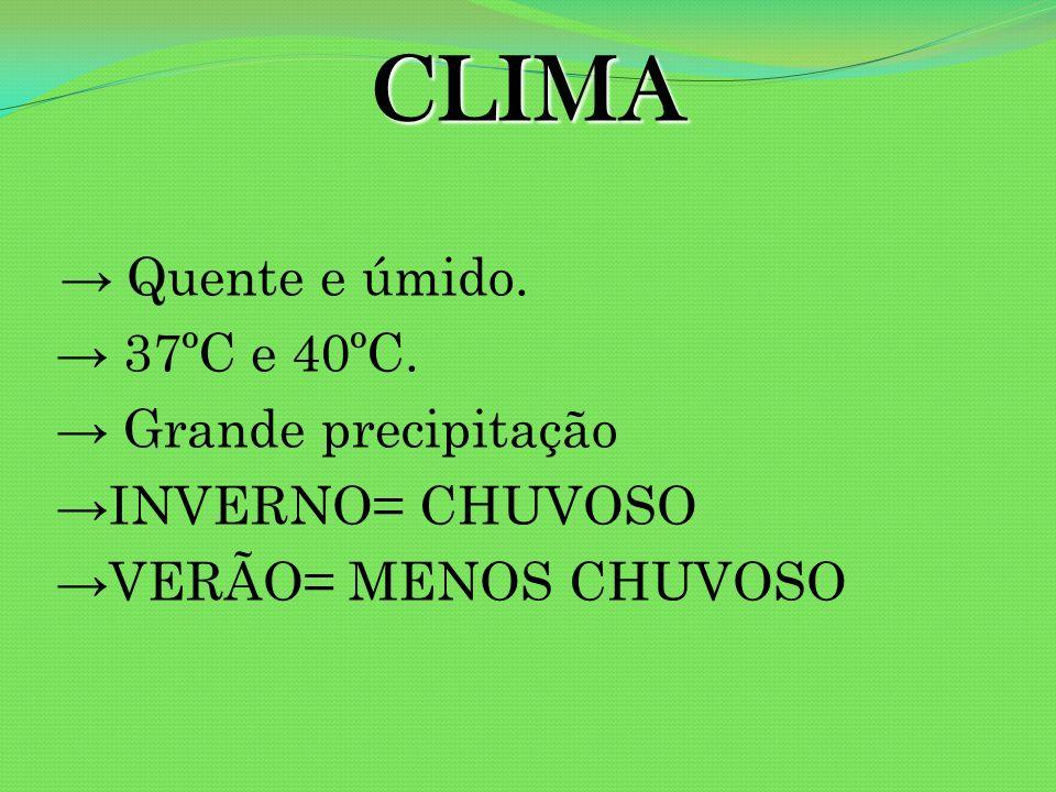 CLIMA → 37ºC e 40ºC. → Grande precipitação →INVERNO= CHUVOSO