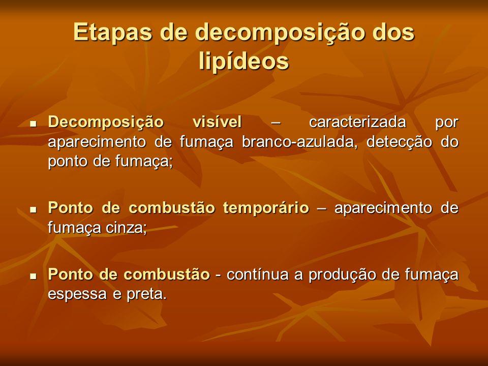 Etapas de decomposição dos lipídeos