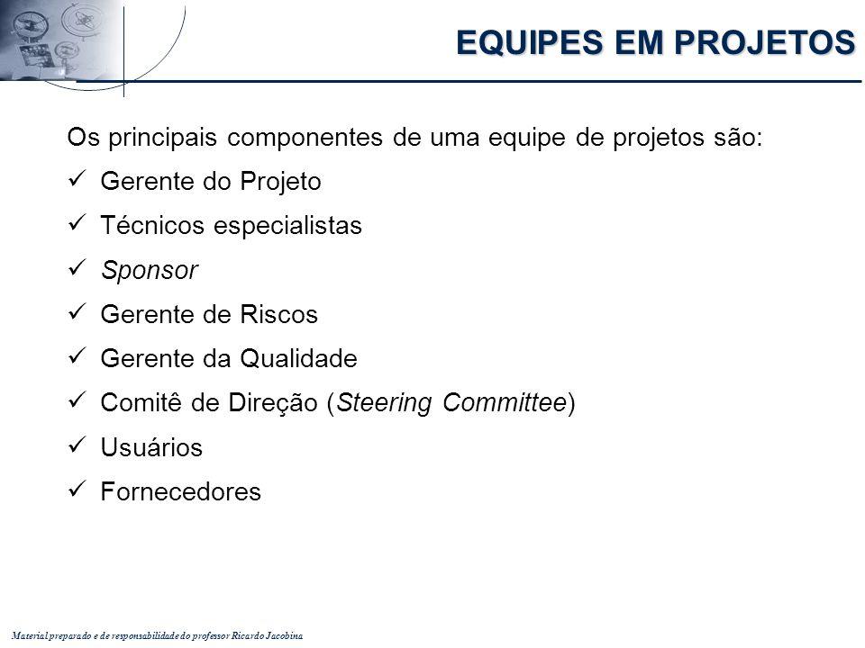EQUIPES EM PROJETOS Os principais componentes de uma equipe de projetos são: Gerente do Projeto. Técnicos especialistas.