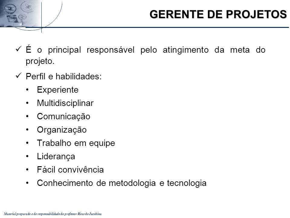 GERENTE DE PROJETOS É o principal responsável pelo atingimento da meta do projeto. Perfil e habilidades:
