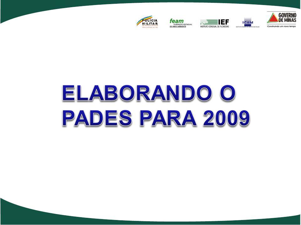 ELABORANDO O PADES PARA 2009