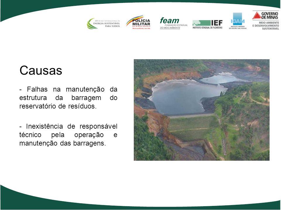 Causas - Falhas na manutenção da estrutura da barragem do reservatório de resíduos.
