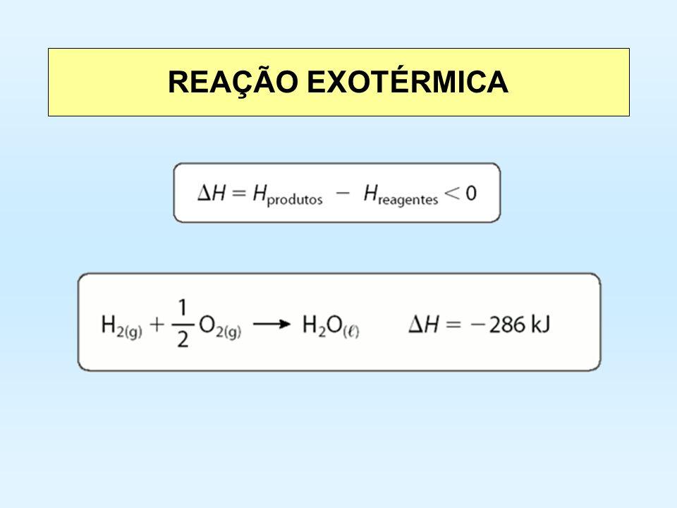REAÇÃO EXOTÉRMICA