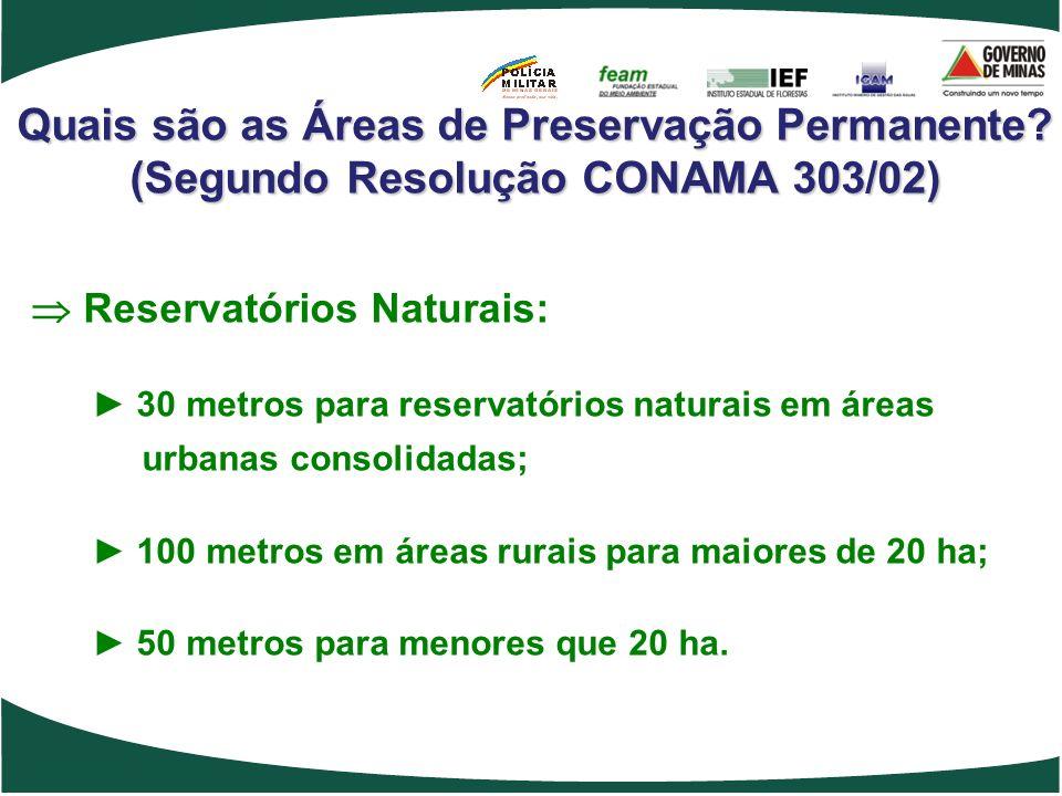 Quais são as Áreas de Preservação Permanente